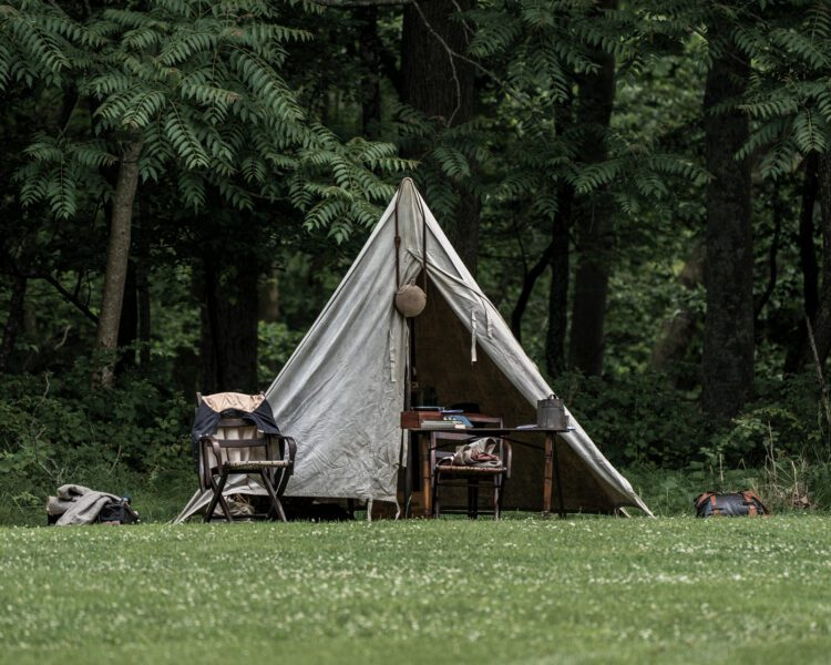 Civil War Encampment Allaire State Park 060119 057