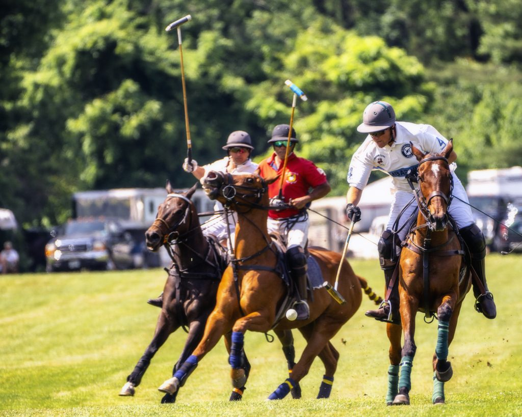 Tinicum Polo Club-06082019-15