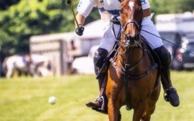Polo Photos at Tinicum Park Photos – June 2018