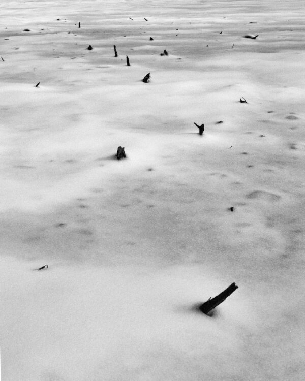 A film photograph of sticks in snow forming an abstract pattern.