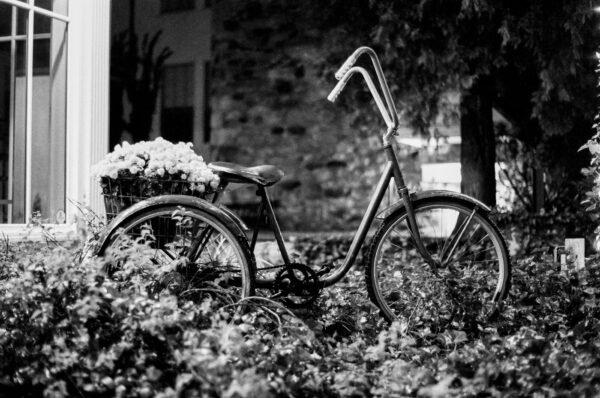 A photograph of a decorative bicycle at night