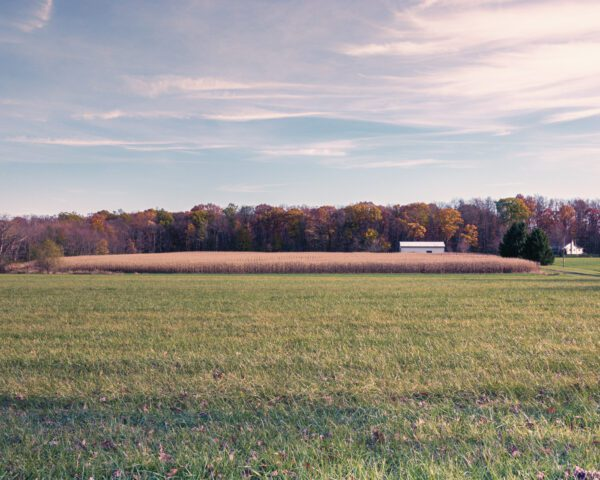 Photo of a field in Pipersville, PA